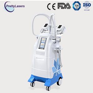 6 IN 1 Multifunction Cryolipolysis Slimming Machine PL-brg80