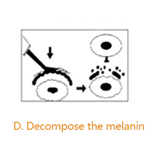 Decompose the melanin
